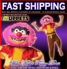 FANCY DRESS COSTUME ~ DISNEY MUPPETS ANIMAL SMALL AGE 3-4